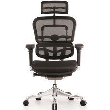 Ergo Elite High Back 26.4'' W x 26'' D x 45.3'' H Adjustable Height Mesh Office Chair - Black