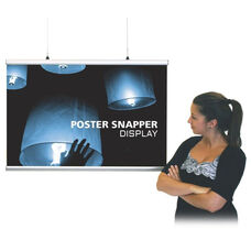 Poster Snapper - 30