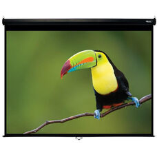 White and Black Wall Mountable Pull-Down Projection Screen with Matte White Fabric Screen and Black Aluminum Housing - 96