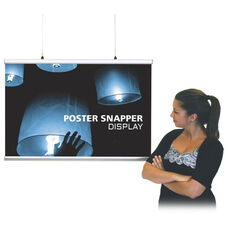 Poster Snapper - 24